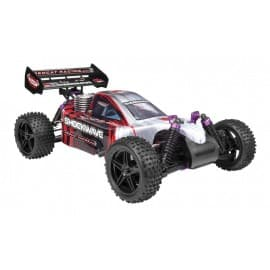 Shockwave 1/10 Scale Nitro Buggy