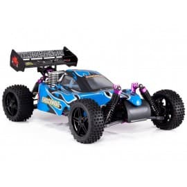 Redcat Shockwave Nitro Buggy 1/10 Scale (Blue)